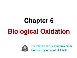 Chapter 6 Biological Oxidation