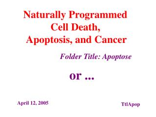 Naturally Programmed  Cell Death,  Apoptosis, and Cancer