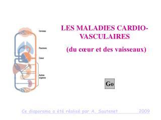 LES MALADIES CARDIO-VASCULAIRES   du c ur et des vaisseaux