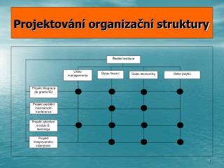 Projektov n  organizacn  struktury