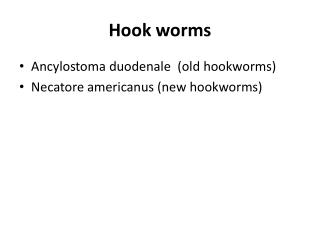 Hook worms