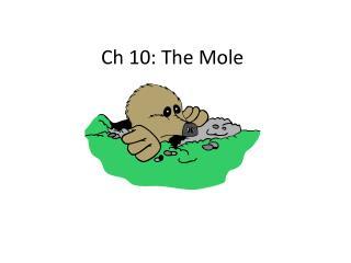 Ch 10: The Mole