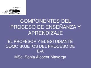 COMPONENTES DEL PROCESO DE ENSE ANZA Y APRENDIZAJE