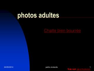 Photos adultes