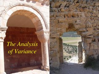 The Analysis of Variance