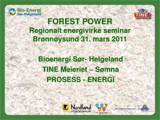 FOREST POWER Regionalt energivirke seminar  Br nn ysund 31. mars 2011