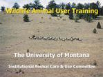 Wildlife Animal User Training