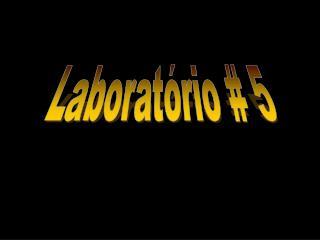 Laborat rio  5