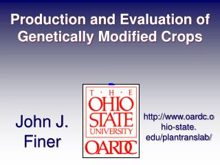 Production and Evaluation of Genetically Modified Crops