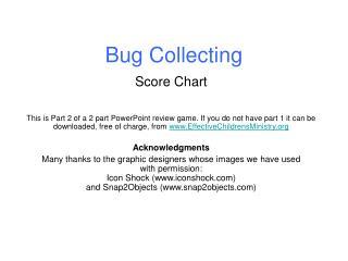 Bug Collecting