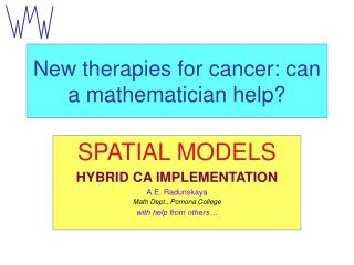 New therapies for cancer: can a mathematician help