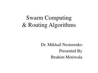 Swarm Computing  Routing Algorithms