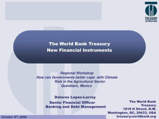 The World Bank Treasury New Financial Instruments