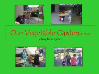 Our Vegetable Gardens 2009 Solway Kindergarten