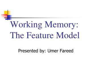 Working Memory: The Feature Model