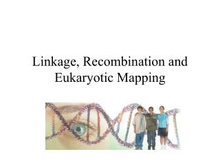 Linkage, Recombination and Eukaryotic Mapping