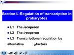 L1   The lac operon L2   The trp operon L3   Transcriptional regulation by             alternative s factors