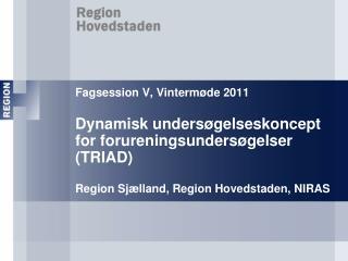 Fagsession V, Vinterm de 2011  Dynamisk unders gelseskoncept  for forureningsunders gelser TRIAD   Region Sj lland, Regi