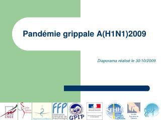 Pand mie grippale AH1N12009