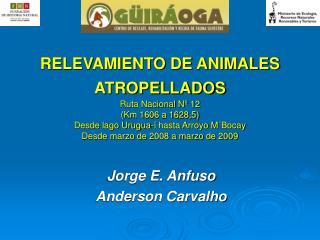 RELEVAMIENTO DE ANIMALES ATROPELLADOS  Ruta Nacional N  12 Km 1606 a 1628,5 Desde lago Urugua-  hasta Arroyo M Bocay Des