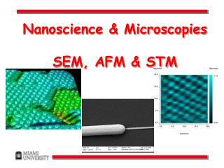 Nanoscience  Microscopies  SEM, AFM  STM