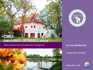 Chiang Mai University     cmu.ac.th