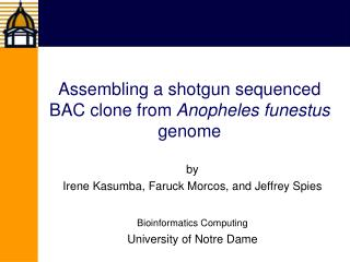 Assembling a shotgun sequenced BAC clone from Anopheles funestus genome