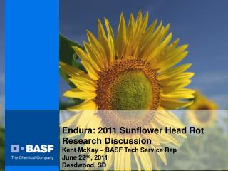 Endura: 2011 Sunflower Head Rot  Research Discussion Kent McKay   BASF Tech Service Rep June 22nd, 2011 Deadwood, SD
