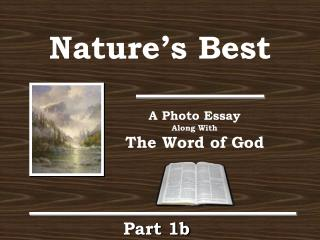 Natures Best and the World of God Part Ib
