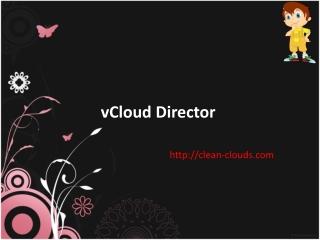 26. VMware vCloud Director