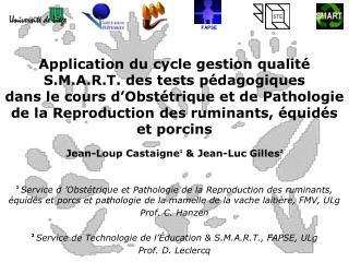 Application du cycle gestion qualit  S.M.A.R.T. des tests p dagogiques  dans le cours d Obst trique et de Pathologie de