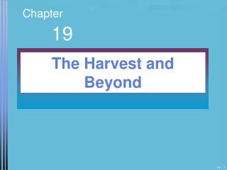 The Harvest and Beyond