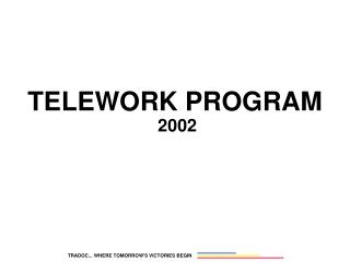 TELEWORK PROGRAM  2002