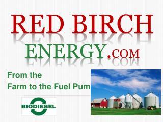 Red birch energy