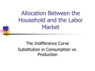 Allocation Between the Household and the Labor Market