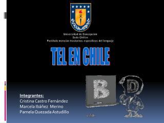 Integrantes: Cristina Castro Fern ndez Marcela Ib  ez  Merino Pamela Quezada Astudillo
