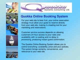 Quokka Online Booking System