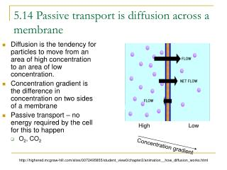 5.14 Passive transport is diffusion across a membrane