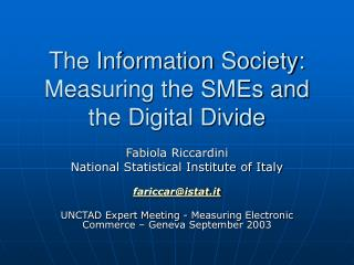 The Information Society:  Measuring the SMEs and  the Digital Divide