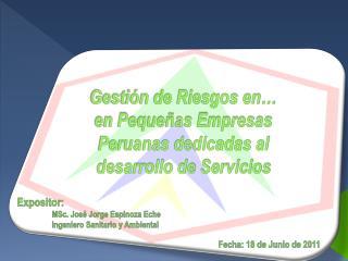 Gesti n de Riesgos en  en Peque as Empresas Peruanas dedicadas al desarrollo de Servicios