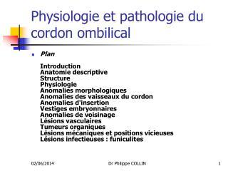 Physiologie et pathologie du cordon ombilical