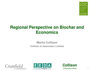 Regional Perspective on Biochar and Economics