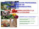 CURSO DE ACTUALIZACION PROFESIONAL VERSION VIII INGENIERIA AGROINDUSTRIAL  CAPITULO VI: NORMALIZACI N Y LA GESTI N DE LA