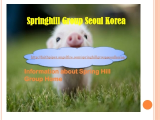 Springhill Group - Springhill Group Seoul Korea | angelfire.