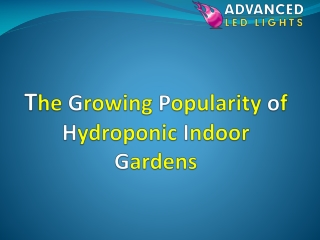 The Growing Popularity of Hydroponic Indoor Gardens
