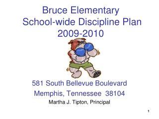 Bruce Elementary  School-wide Discipline Plan  2009-2010