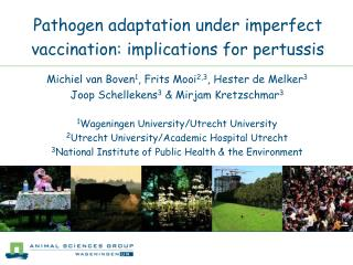 Pathogen adaptation under imperfect vaccination: implications for pertussis