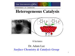 Heterogeneous Catalysis         6 lectures