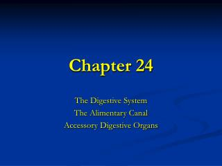 The Digestive System The Alimentary Canal Accessory Digestive Organs