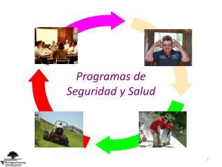 Programas de Seguridad y Salud